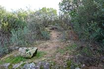 Pla de la Figuereta, camí a la Roca Rodona per la carena.