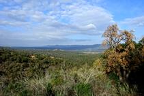Vistes a la vall de Ridaura.