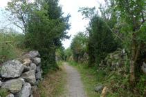 Alguns murs de pedra delimiten el camí.
