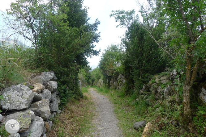 Camí Natural de l