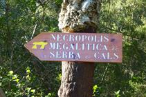 Camí a la necròpolis megalítica de la serra de Cals.