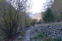 Camí empedrat de la vall de Madriu.