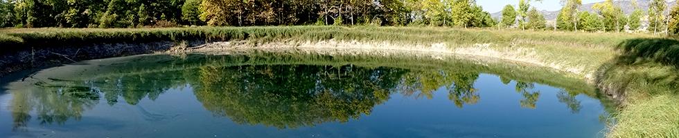 Els estanys de Basturs