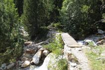 Creuem el barranc de Llubriqueto gràcies a un petit pont de fusta.