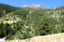 Des de l´altre vessant de la vall de Sant Martí tenim una bona panoràmica del barranc del Pessó.