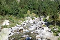La pista avança paral·lela i a tocar del riu de Sant Martí.