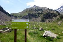 Trencall coll de Toro / Vall de Barrancs.