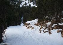 El sender pel qual baixem travessa una pista i continua baixant (en direcció SE).