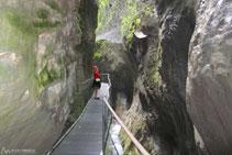 Ens trobem una imatge de <i>Nostra Senyora de les Canyons de la Fou</i>.