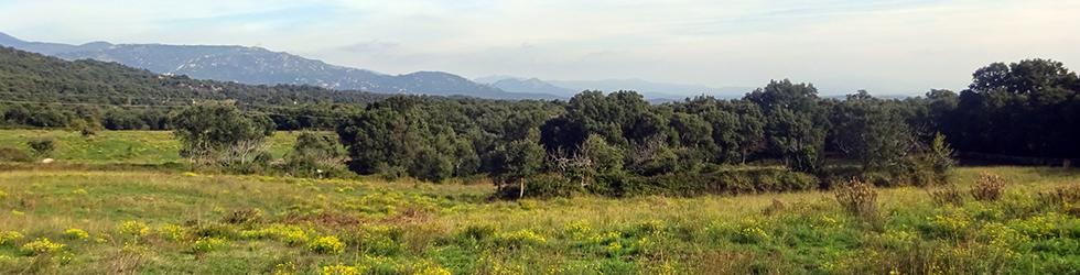GR 11 - Etapa 04: Requesens - La Vajol