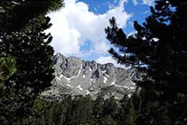 Pic de Serramitjana (2.523m) des del bosc.
