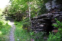Cabana de pedra seca dins del bosc.