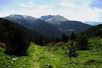 Deixem el bosc enrere i entrem al domini dels prats alpins.