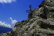 Cadenes a la roca.