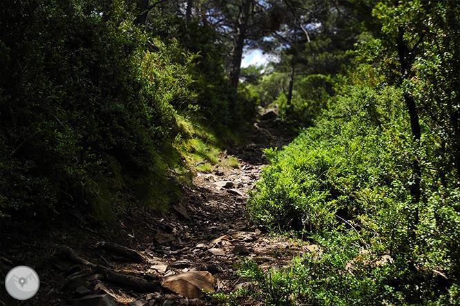 GRP - Etapa 7: Refugi de Comapedrosa - Aixovall 1