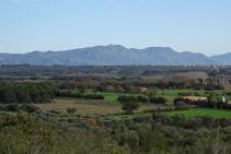 Serra de l´Albera des del Montpedrós.