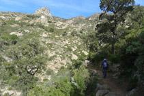 Ens endinsem al rec de Sant Onofre.