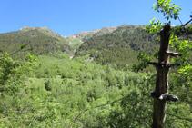 Al nord, a l´altra banda de la vall, hi tenim el Pinetó i la serra del Pago.