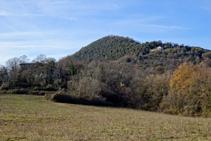 Vessant SE de la serra de Sant Miquel del Mont.
