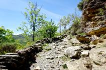 Camí de ferradura cap a Sorre.