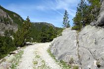 Roques polides pel glaç a la vall de la Llosa.