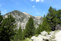 Pic de la Muga (2.860m).
