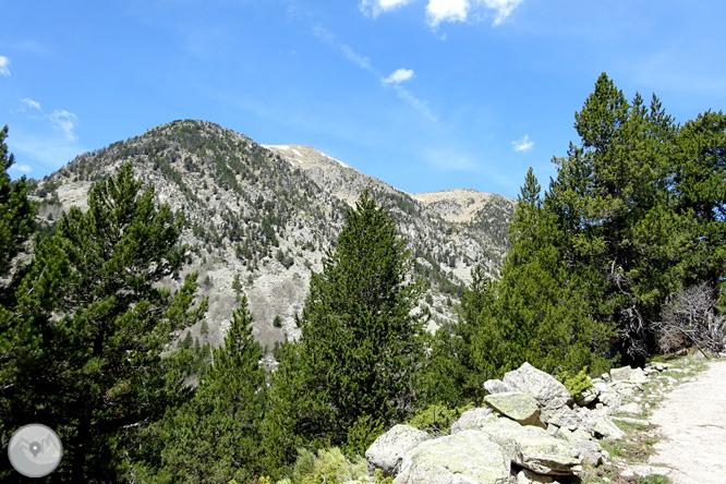 La Vall de la Llosa 1