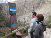 Plafons informatius al llarg del camí que ens parlen de la vegetació i de la fauna de la zona.