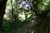 El camí és molt agradable.