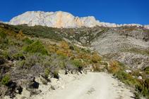 Pista de Sant Gervàs: punt on desemboca el corriol per on hem pujat des del barranc de Miralles.