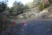 Pal indicador R172, Collada Camp de Pinyons.
