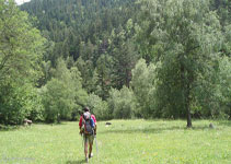 Un bonic sender entre prats i boscos ens porta de nou al pont de Perosa.