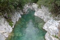 Riu Ara des del pont d´Oncins (aigües amunt).