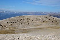 La Tossa Pelada i els Pirineus des del cim.