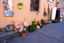 Col·lecció de carbasses al carrer Major.