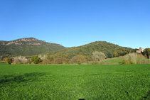 Camps a les faldes de Sant Julià del Mont.