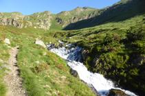 Neretars i salt d´aigua al riu dels Meners a la vall de Ransol.
