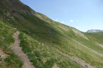 Flanquejant els pendents herbosos camí al refugi de Cóms de Jan.