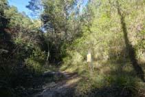 A la dreta, el trencall que ens portaria fins a la part superior del pont de l´Afrau. Nosaltres seguim recte.