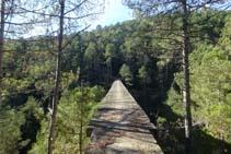 El Pont de l´Afrau vist des de la riba dreta orogràfica de la Rasa de Cirera.