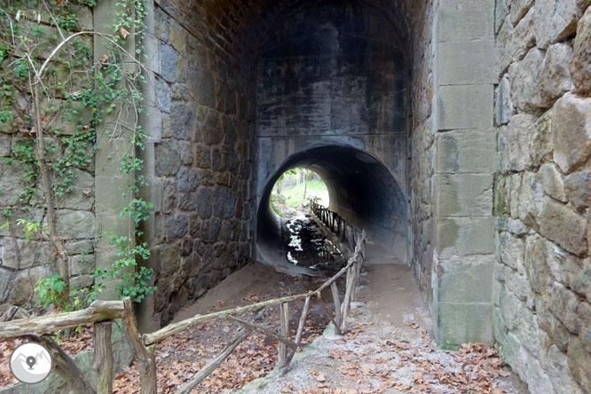 El pont de l