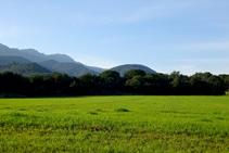 Camps de cereals i les muntanyes de Rocacorba.