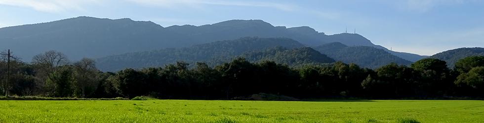 El volcà del puig d�Adri