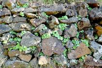 Murs de pedra seca.