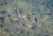 Masies en ruïnes a les Gavarres.