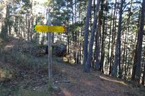 Pal indicador en el camí de Ribes de Freser a l´ermita de Sant Antoni.