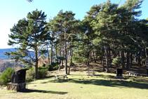 Zona de pícnic a l´ermita de Sant Antoni.