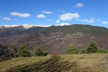 Les pinedes de serra Estremera, el poblet de Ventolà i el Puigmal al fons.