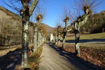 Jardins del balneari de Montagut.