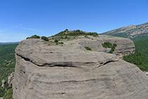 L´altiplà de la Roca del Corb (O) des de l´Agulla del Corb.